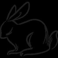 Cual es mi Horóscopo Chino Conejo Brush Negro