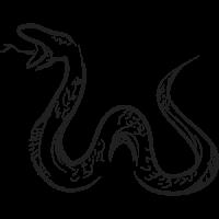 Cual es mi Horóscopo Chino Serpiente Brush Negro