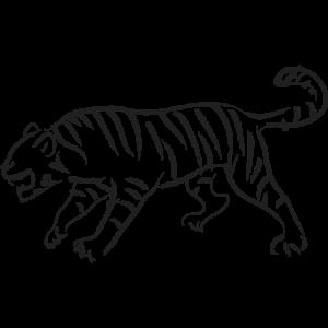 Cual es mi Horóscopo Chino Tigre Brush Negro